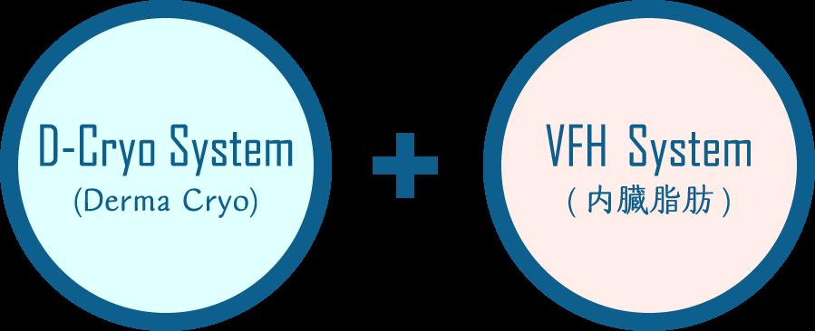 D-Cryo System (Derma Cryo) + VFH System (内臓脂肪)